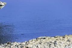 Ποταμός Ramganga και gharial, επίσης γνωστός ως gavial, και ψάρι-κατανάλωση του κροκοδείλου - Jim Corbett National Park, Ινδία στοκ φωτογραφία