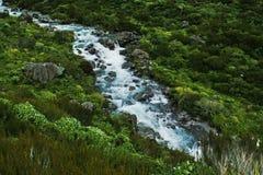 Ποταμός 1 Rolleston Στοκ εικόνες με δικαίωμα ελεύθερης χρήσης