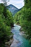 Ποταμός Salsa Στοκ φωτογραφία με δικαίωμα ελεύθερης χρήσης