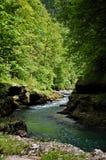 Ποταμός Salsa Στοκ φωτογραφίες με δικαίωμα ελεύθερης χρήσης