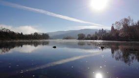 Ποταμός Stryi, Carpathians, Ουκρανία βουνών Όμορφη ηλιόλουστη ημέρα Ομαλή μύγα προς τα εμπρός επάνω από το νερό απόθεμα βίντεο