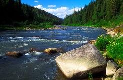 Ποταμός Taiga Στοκ Εικόνες