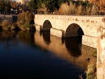 ποταμός tajo Στοκ Εικόνες