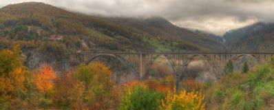 Ποταμός Tara και 5$α  urÄ ` eviÄ ‡ φαραγγιών μια γέφυρα της Tara, Μαυροβούνιο - εικόνα φθινοπώρου Στοκ φωτογραφίες με δικαίωμα ελεύθερης χρήσης