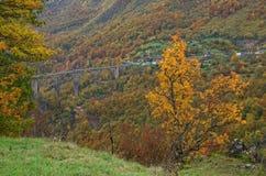 Ποταμός Tara και 5$α  urÄ ` eviÄ ‡ φαραγγιών μια γέφυρα της Tara, Μαυροβούνιο Στοκ φωτογραφίες με δικαίωμα ελεύθερης χρήσης