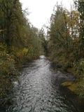 Ποταμός Tualitin Στοκ Φωτογραφίες