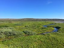 Ποταμός tundra στοκ φωτογραφίες με δικαίωμα ελεύθερης χρήσης