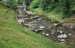 Ποταμός Turcul στο πίτουρο Ρουμανία Στοκ φωτογραφίες με δικαίωμα ελεύθερης χρήσης