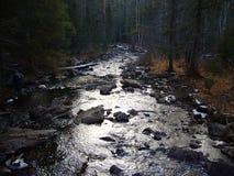 ποταμός vernal Στοκ Φωτογραφίες