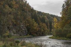 Ποταμός Vltava κοντά στην καταστροφή Divci Kamen το φθινόπωρο Στοκ φωτογραφίες με δικαίωμα ελεύθερης χρήσης