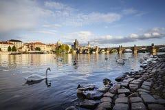 Ποταμός Vltava στην Πράγα, Τσεχία Στοκ εικόνα με δικαίωμα ελεύθερης χρήσης