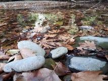 Ποταμός Voidomatis, Ελλάδα Στοκ εικόνα με δικαίωμα ελεύθερης χρήσης