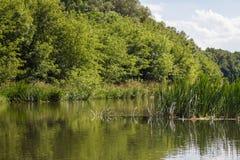 Ποταμός Vorona Στοκ Φωτογραφίες
