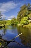 ποταμός wharfe Στοκ φωτογραφία με δικαίωμα ελεύθερης χρήσης