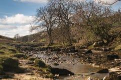 Ποταμός Wharfe Στοκ Εικόνες