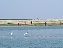 Ποταμός Yamuna, ποταμός Brahmaputra, Bogra, Μπανγκλαντές Στοκ εικόνα με δικαίωμα ελεύθερης χρήσης