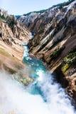 Ποταμός Yellowstone από τις χαμηλότερες πτώσεις στοκ εικόνες