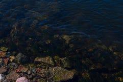 Ποταμός Yenisey στοκ φωτογραφίες με δικαίωμα ελεύθερης χρήσης