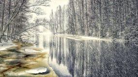 Ποταμών δέντρων χειμερινών χιονοπτώσεων όμορφη σημύδων τέχνη φωτογραφιών χρωμάτων δασική Στοκ φωτογραφία με δικαίωμα ελεύθερης χρήσης