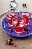 Ποτό από τα μούρα Στοκ Φωτογραφίες