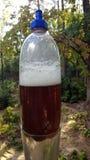 ποτό αφρώδες Στοκ Φωτογραφίες
