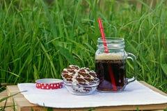 Ποτό και μπισκότα Στοκ φωτογραφία με δικαίωμα ελεύθερης χρήσης