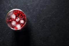 Ποτό μούρων με τον πάγο στοκ φωτογραφία