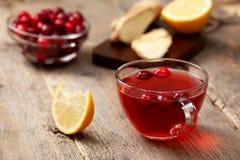 Ποτό πιπεροριζών λεμονιών των βακκίνιων Στοκ εικόνα με δικαίωμα ελεύθερης χρήσης