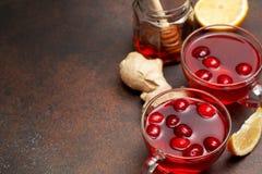 Ποτό πιπεροριζών λεμονιών των βακκίνιων Στοκ Φωτογραφία
