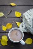 Ποτό σοκολάτας στο πάρκο φθινοπώρου με τα κίτρινα φύλλα και το μαντίλι πλησίον στοκ εικόνες με δικαίωμα ελεύθερης χρήσης