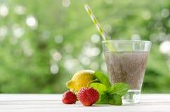 Ποτό σπόρων Chia με το λεμόνι, τη μέντα και τη φράουλα Στοκ εικόνες με δικαίωμα ελεύθερης χρήσης