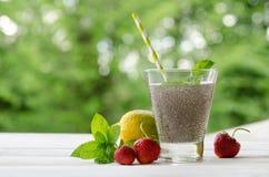 Ποτό σπόρων Chia με το νερό στο διαφανές γυαλί με το λεμόνι, μέντα Στοκ φωτογραφία με δικαίωμα ελεύθερης χρήσης