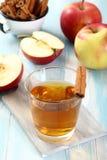 Ποτό φρούτων της Apple στο γυαλί Στοκ εικόνα με δικαίωμα ελεύθερης χρήσης