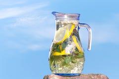 Ποτό φύσης Στοκ εικόνα με δικαίωμα ελεύθερης χρήσης
