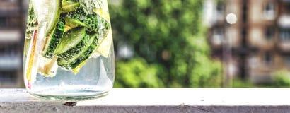 Ποτό Detox από το αγγούρι, το λεμόνι και τη μέντα στο υπόβαθρο μιας σύγχρονης πόλης νεολαίες ενηλίκων Στοκ εικόνες με δικαίωμα ελεύθερης χρήσης