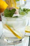 Ποτό Detox με το μεταλλικό νερό, το λεμόνι και τη μέντα Στοκ Φωτογραφίες