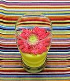 ποτό floral Στοκ φωτογραφία με δικαίωμα ελεύθερης χρήσης