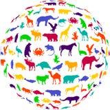 ποτ πουρί ζωικών βασίλει&omega Στοκ φωτογραφία με δικαίωμα ελεύθερης χρήσης