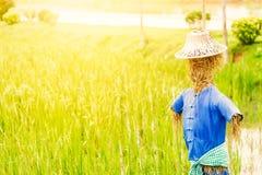 Πουκάμισο ένδυσης σκιάχτρων και καπέλο αγροτών και στον τομέα στοκ εικόνα