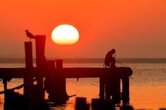Πουλί, ήλιος και ψαράς Στοκ φωτογραφία με δικαίωμα ελεύθερης χρήσης