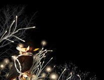 Πουλί με τις ελαφριές συμβολοσειρές Στοκ φωτογραφία με δικαίωμα ελεύθερης χρήσης