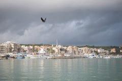 πουλί που πετά πέρα από το λιμάνι Anzio τη νεφελώδη ημέρα, Ιταλία Στοκ φωτογραφία με δικαίωμα ελεύθερης χρήσης