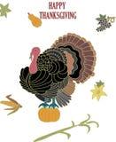 Πουλί της Τουρκίας για την ημέρα των ευχαριστιών Στοκ Φωτογραφία