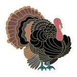 Πουλί της Τουρκίας για την ημέρα των ευχαριστιών Στοκ Φωτογραφίες