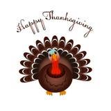 Πουλί της Τουρκίας για τον ευτυχή εορτασμό ημέρας των ευχαριστιών Στοκ Εικόνες