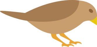 πουλί Απεικόνιση αποθεμάτων