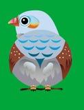 πουλί Στοκ εικόνα με δικαίωμα ελεύθερης χρήσης