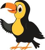 Πουλί Illustraton Toucan Στοκ Φωτογραφίες