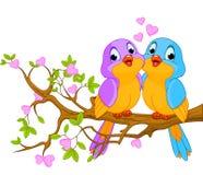 Πουλιά ερωτευμένα διανυσματική απεικόνιση