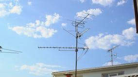 Πουλιά που πετούν γύρω από την κεραία TV καλωδίων απόθεμα βίντεο